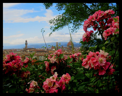 Florence panorama - ph.                   Federica Gentile